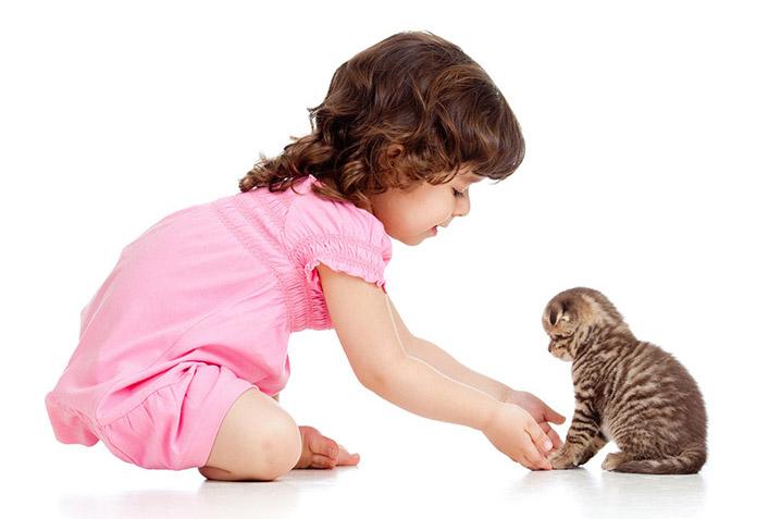 Kind met Kat - natuurlijk vlooienmiddel