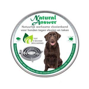Natuurlijke vlooien- en tekenband voor honden werkzaam op natuurlijke basis